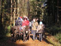 unterwegs_im_Wald